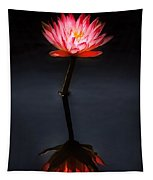 Flower - Water Lily - Nymphaea Jack Wood - Reflection Tapestry