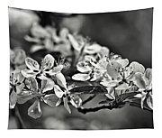 Flowering Crabapple 2 Bw Tapestry