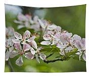 Flowering Crabapple 2 Tapestry