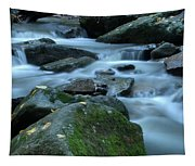 Flowing Spirit Tapestry
