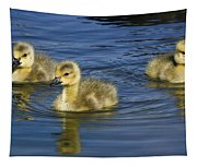 Fluffy Floaters  Tapestry