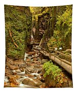 Flume Gorge At Franconia Notch Tapestry