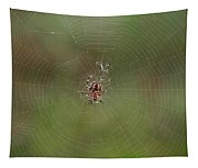 Fly Catcher Tapestry
