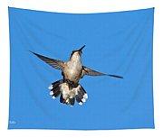 Flying Hummingbird Against Blue Sky Tapestry