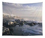 Fog And Rocky Shoreline In Winter With Tapestry