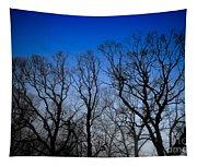 Foggy Blue Morning Tapestry