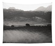 Foggy Countryside Tapestry