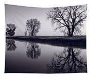 Foggy Morn Bw Tapestry