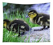 Follow The Leader Ducky Style Tapestry