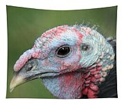 Fontana Turkey Portrait Tapestry
