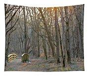 Foot Bridge In Fort Harrison State Park Tapestry