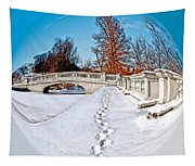 Footprints In The Snow - Sphere Tapestry