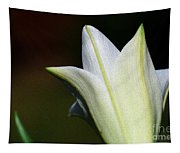 For The Love Of Lilies 9 Tapestry