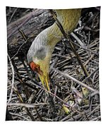 foraging for wild edibles Sandhill Crane Tapestry