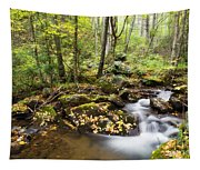 Forest And Stream Tapestry