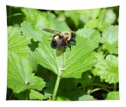 Forest Bee 7260 Tapestry
