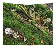 Forest Floor Fungi And Moss Tapestry