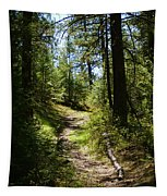 Forest Path In Spokane 2014 Tapestry