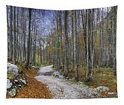 Forest Path Tapestry