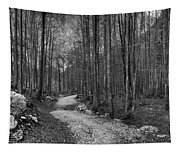 Forest Trail Bw Tapestry