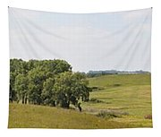 Fossil Prairie Panoramic 3 Tapestry