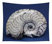 Fossilized Ammonite Tapestry