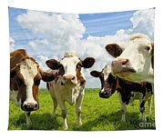 Four Chatting Cows Tapestry