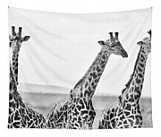 Four Giraffes Tapestry