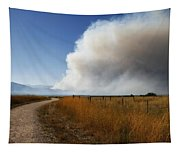 Four Mile Canyon Fire Colorado Tapestry