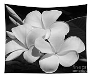 Frangipani In Black And White Tapestry