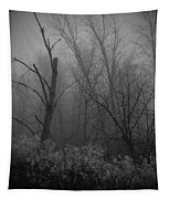 Freezing Rogue Valley Fog At Night Tapestry