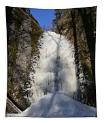 Freezing Waterfall Tapestry