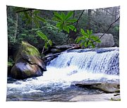 French Broad River Waterfall Tapestry