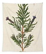 French Lavender Tapestry