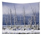 Fresh Snowfall And Bare Trees Tapestry