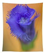 Fringed Gentian Tapestry