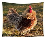 Frizzle Rooster Tapestry