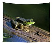 Frog On A Log Tapestry