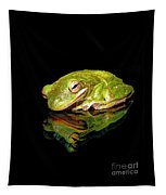 Frog Tapestry