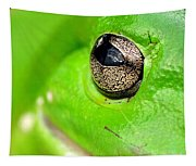 Frog's Eye Tapestry