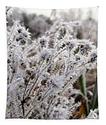 Frost In The Field Tapestry