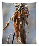 Frosted And Wilted Tapestry