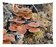 Frosted Cascading Mushrooms Tapestry