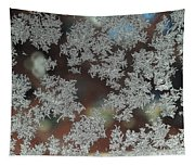 Frosted Window Tapestry