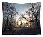 Frosty Morn 3 Tapestry