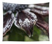 Frosty Rudbeckia Tapestry
