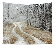 Frosty Trail 2 Tapestry