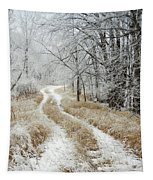 Frosty Trail Tapestry