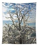 Frozen Backlight Tapestry