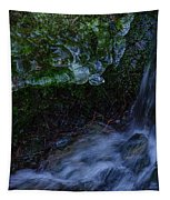 Frozen Garden Stream Tapestry
